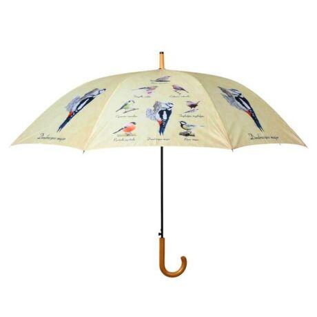 I TP310 madaras esernyő