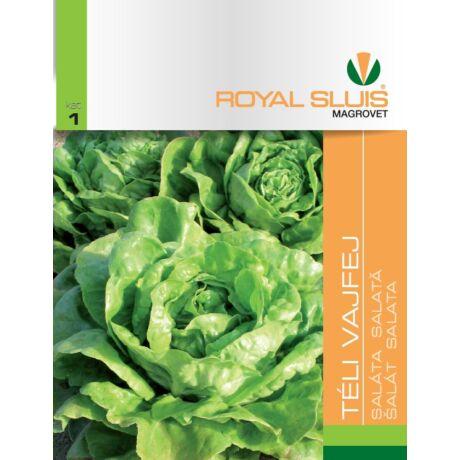 R Saláta Téli vajfej 2,5g